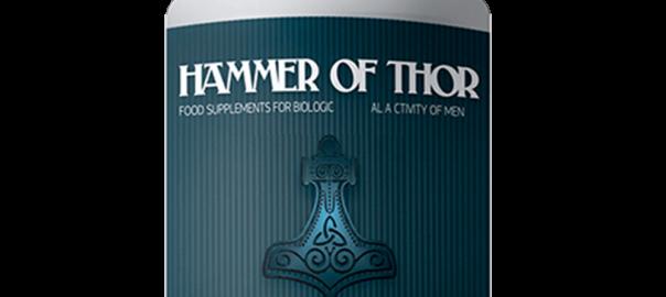 có nên dùng hammer of thor 2